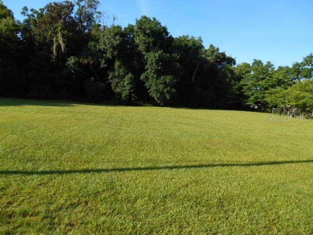 Queener Lot 7, Port Richey, FL 34668 (MLS #T3148942) :: KELLER WILLIAMS ELITE PARTNERS IV REALTY