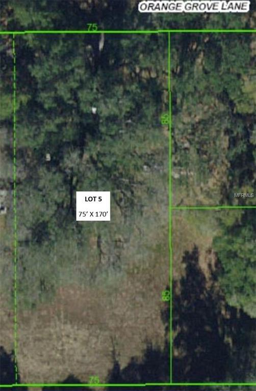 30312 Orange Grove Lane Lot 5, Wesley Chapel, FL 33545 (MLS #T3151357) :: Griffin Group