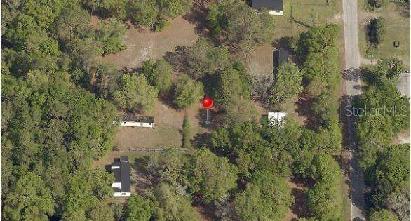 10226 Judy Road, Dover, FL 33527 (MLS #T3157802) :: CENTURY 21 OneBlue