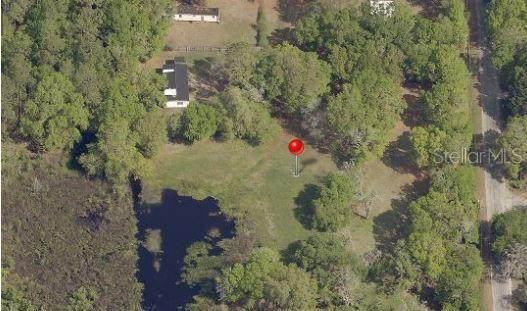 10202 Judy Road, Dover, FL 33527 (MLS #T3157832) :: CENTURY 21 OneBlue