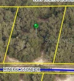 34219 Mineral Stone Drive - Photo 1