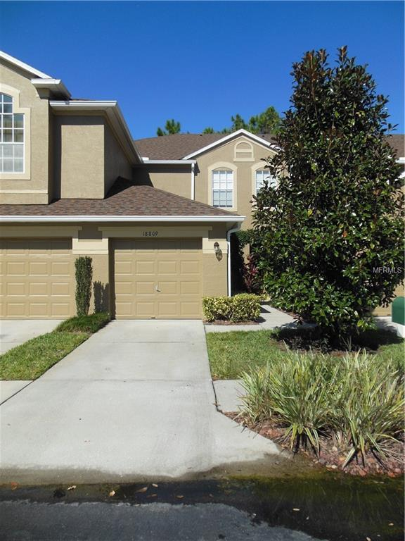 18809 Duquesne Drive, Tampa, FL 33647 (MLS #T3167063) :: Team Bohannon Keller Williams, Tampa Properties