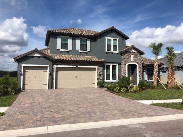 29043 Picana Lane, Wesley Chapel, FL 33543 (MLS #T3177116) :: Armel Real Estate