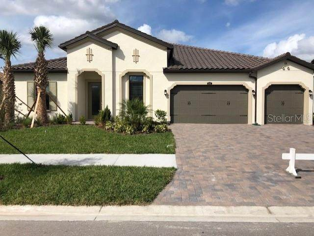 29091 Picana Lane, Wesley Chapel, FL 33543 (MLS #T3179841) :: Armel Real Estate