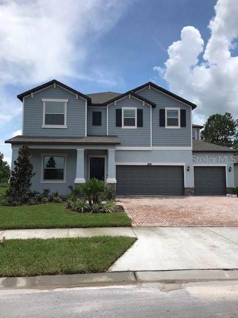 2765 Hilliard Drive, Wesley Chapel, FL 33543 (MLS #T3186139) :: NewHomePrograms.com LLC