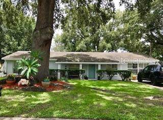 Address Not Published, Brandon, FL 33510 (MLS #T3186720) :: Jeff Borham & Associates at Keller Williams Realty