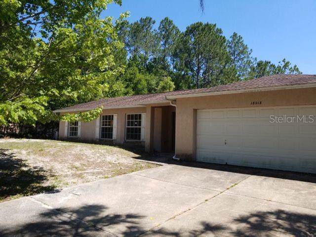 18018 Driftwood Lane, Lutz, FL 33558 (MLS #T3188143) :: Bridge Realty Group