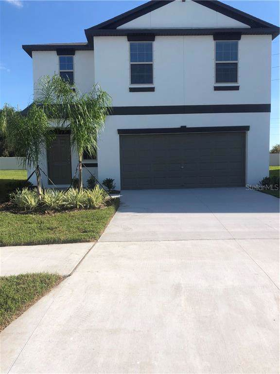 5121 White Chicory Drive, Apollo Beach, FL 33572 (MLS #T3194613) :: Premium Properties Real Estate Services