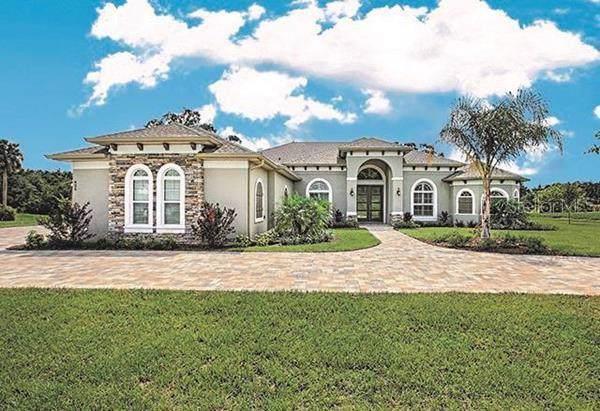 4019 Cove Lake Place, Land O Lakes, FL 34639 (MLS #T3200386) :: The Nathan Bangs Group