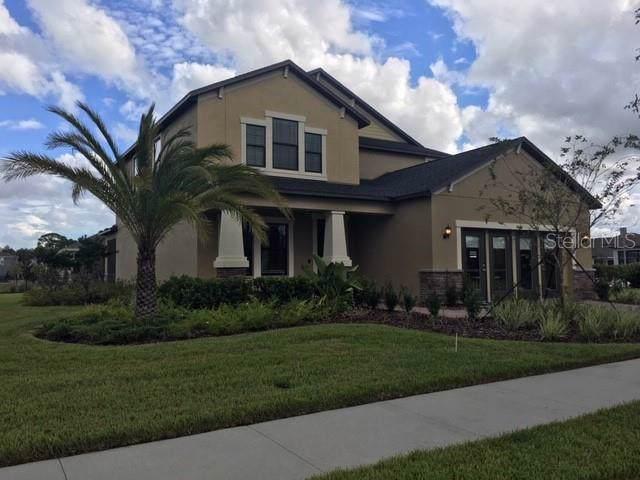 4464 Slipstream Drive, Land O Lakes, FL 34638 (MLS #T3203394) :: 54 Realty