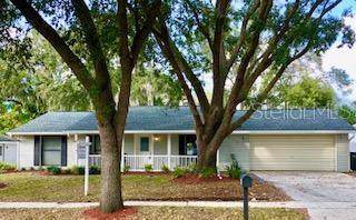 810 Granite Road, Brandon, FL 33510 (MLS #T3210620) :: The Duncan Duo Team