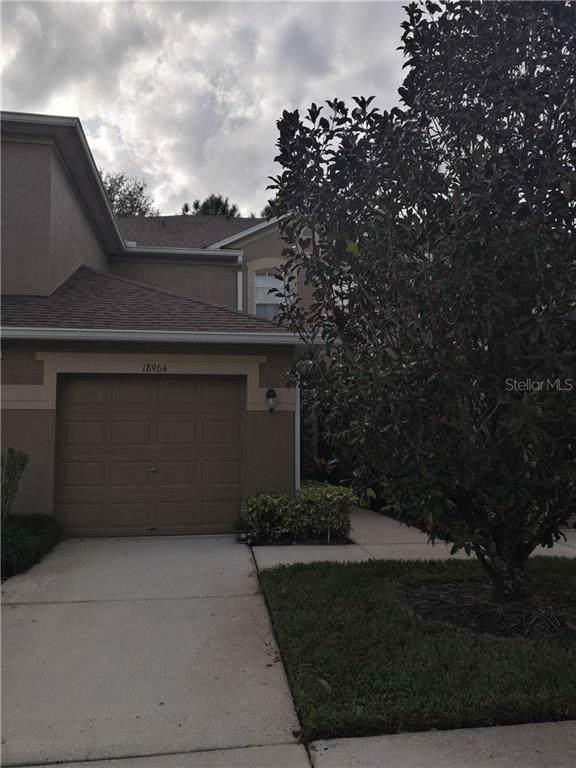 18964 Duquesne Drive, Tampa, FL 33647 (MLS #T3213715) :: Team Bohannon Keller Williams, Tampa Properties