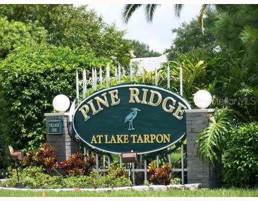 1236 Pine Ridge Circle W G2, Tarpon Springs, FL 34688 (MLS #T3220790) :: Lock & Key Realty