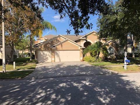 4241 Sandy Shores Drive, Lutz, FL 33558 (MLS #T3220819) :: Bustamante Real Estate