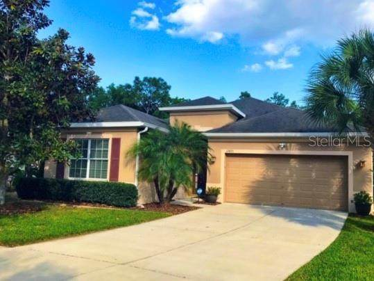 17475 New Cross Circle, Lithia, FL 33547 (MLS #T3234304) :: The Brenda Wade Team