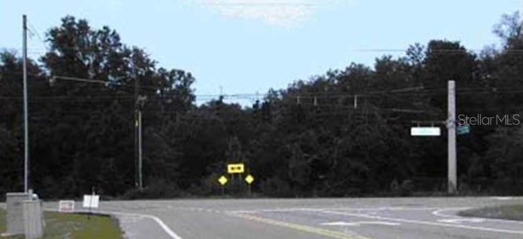 15801 Morris Bridge Road - Photo 1