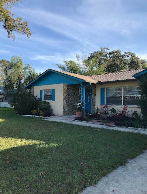 6064 Newmark Street, Spring Hill, FL 34606 (MLS #T3278117) :: Realty One Group Skyline / The Rose Team