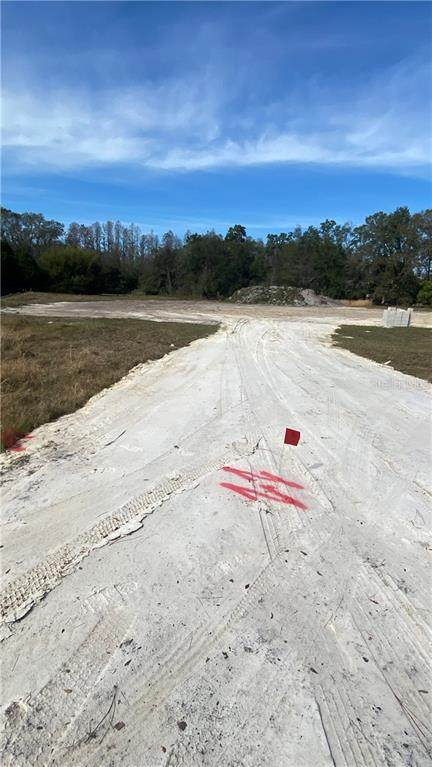 19005 Deer Point Place, Odessa, FL 33556 (MLS #T3279608) :: Griffin Group