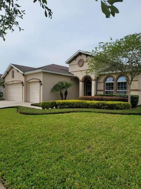 2227 Valterra Vista Way, Valrico, FL 33594 (MLS #T3302577) :: The Robertson Real Estate Group