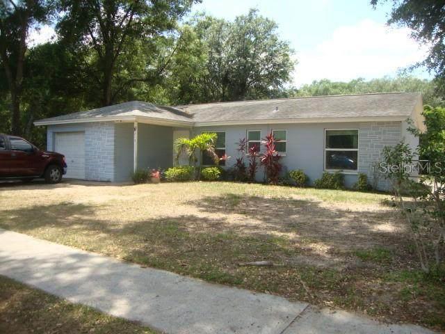 215 Sheryl Lynn Drive, Brandon, FL 33510 (MLS #T3305595) :: Premier Home Experts