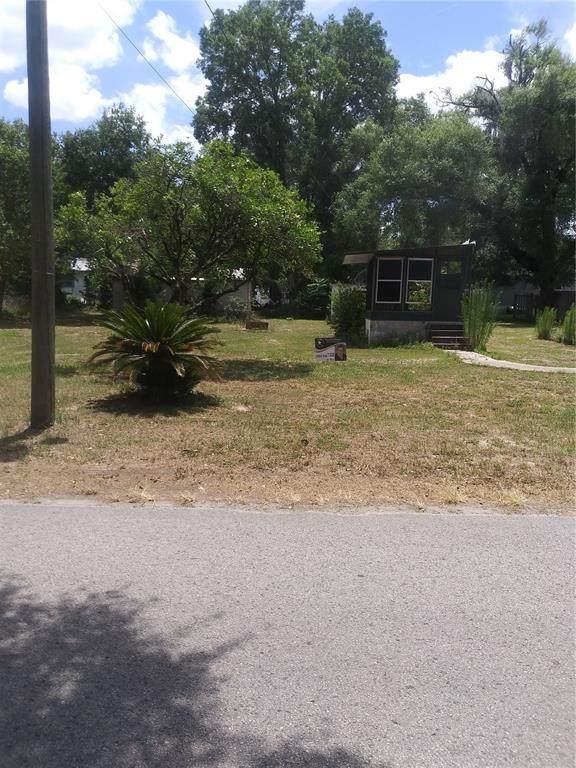 29112 Forbes Street, Nobleton, FL 34661 (MLS #T3305948) :: Griffin Group