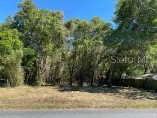 9106 Royal Palm Avenue, New Port Richey, FL 34654 (MLS #T3308243) :: Armel Real Estate