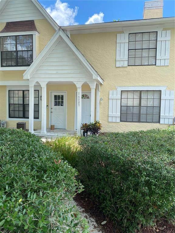 16089 Dawnview Drive, Tampa, FL 33624 (MLS #T3310936) :: Team Pepka