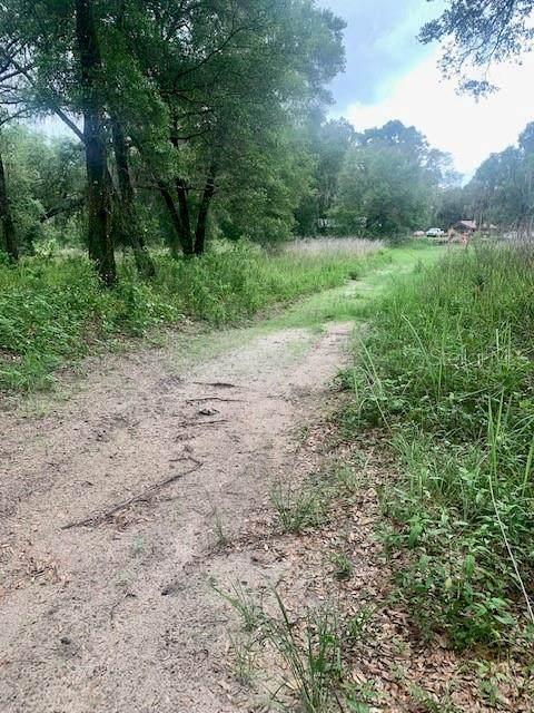 975 Cedar Tree Drive, Brooksville, FL 34602 (MLS #T3313800) :: Frankenstein Home Team