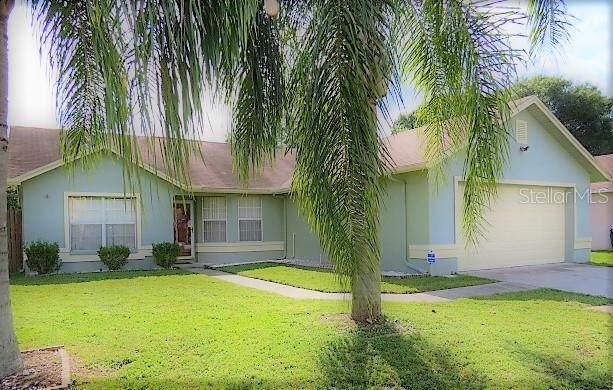 11618 Wellman Drive, Riverview, FL 33578 (MLS #T3337084) :: CARE - Calhoun & Associates Real Estate