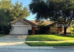 241 Millstone Drive, Palm Harbor, FL 34683 (MLS #U8016383) :: Delgado Home Team at Keller Williams
