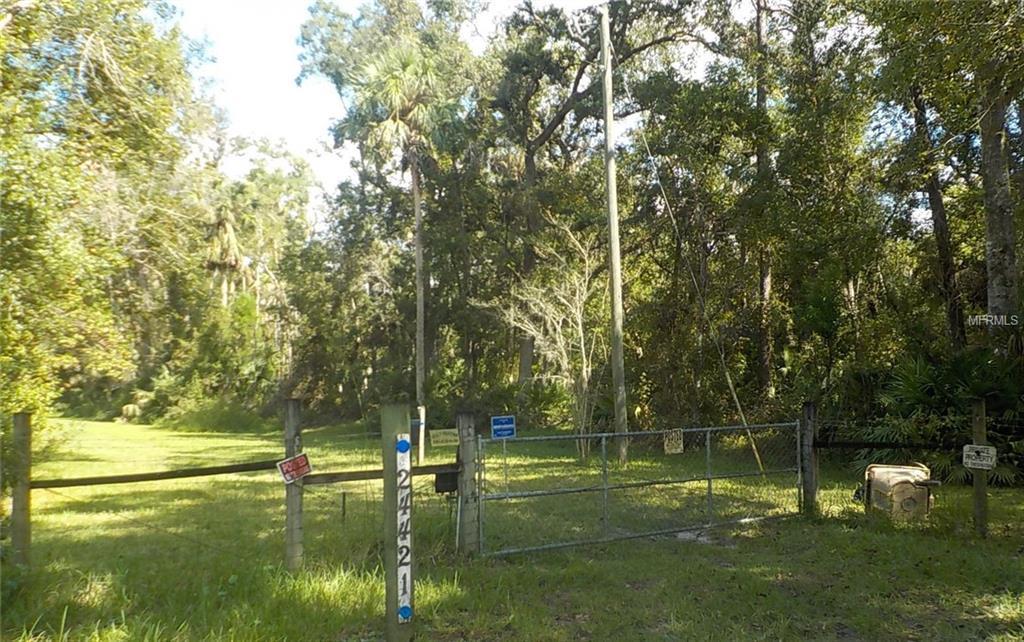24421 Trespass Trail - Photo 1
