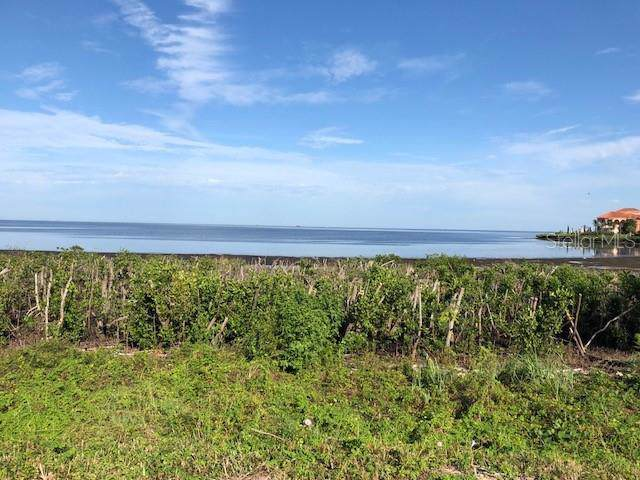 Harborpointe Drive, Port Richey, FL 34668 (MLS #U8022433) :: Zarghami Group
