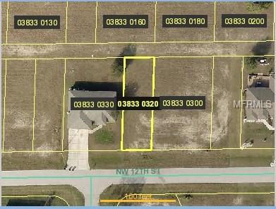 2227 Nw 12Th St, Cape Coral, FL 33993 (MLS #U8024609) :: Mark and Joni Coulter | Better Homes and Gardens