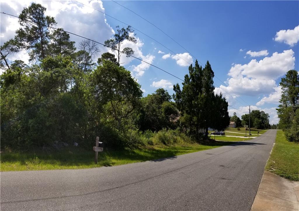 7043 Bahama Swallow Avenue - Photo 1