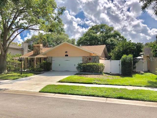 13816 Gull Way, Clearwater, FL 33762 (MLS #U8049659) :: Jeff Borham & Associates at Keller Williams Realty
