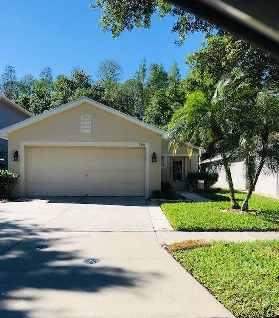 7842 Citrus Blossom Drive, Land O Lakes, FL 34637 (MLS #U8080816) :: Team Borham at Keller Williams Realty