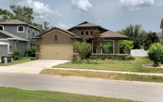 12500 Cricklewood Drive, Spring Hill, FL 34610 (MLS #U8089226) :: Team Borham at Keller Williams Realty