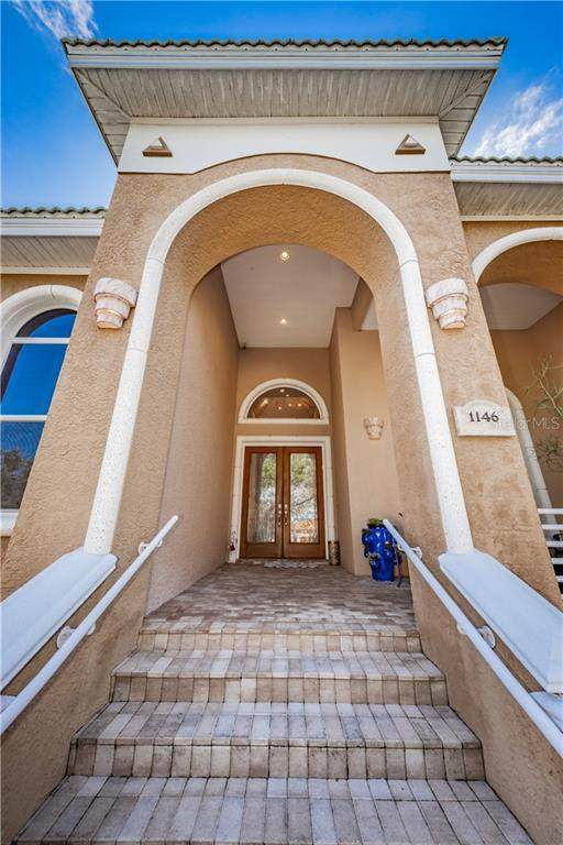 1146 Skye Lane, Palm Harbor, FL 34683 (MLS #U8095199) :: BuySellLiveFlorida.com