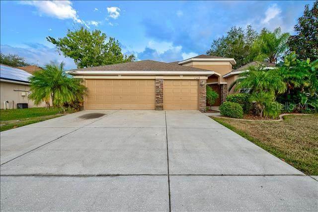 2342 Mountain Ash Way, New Port Richey, FL 34655 (MLS #U8100996) :: Pepine Realty