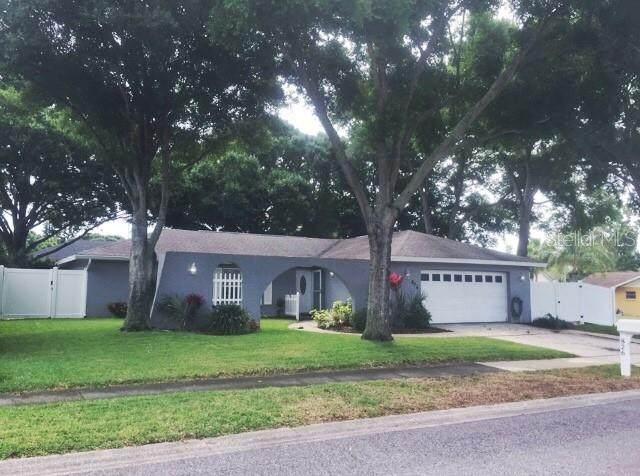 826 16TH Way, Palm Harbor, FL 34683 (MLS #U8120271) :: Delgado Home Team at Keller Williams