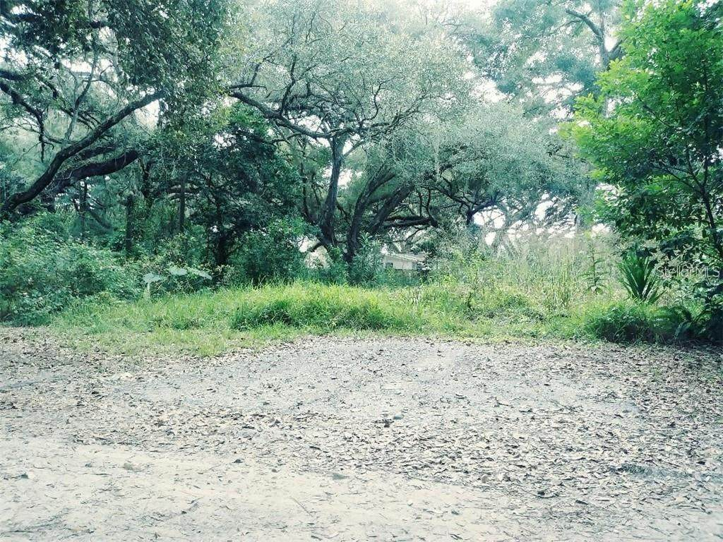 16526 Kanawha Lane - Photo 1