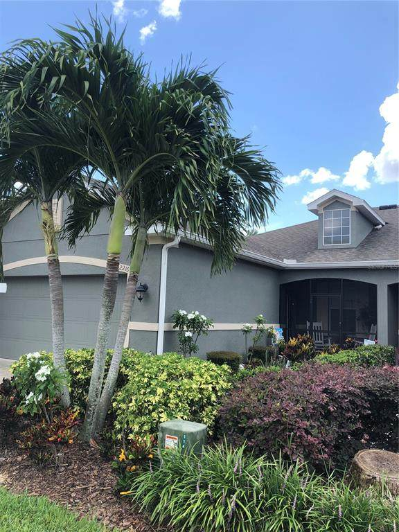 2216 Parrot Fish Drive, Holiday, FL 34691 (MLS #U8126773) :: Rabell Realty Group