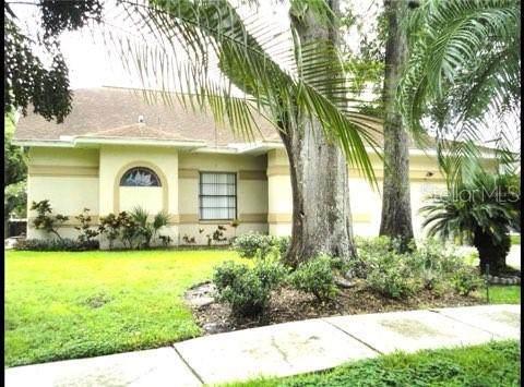 14924 Redcliff Drive, Tampa, FL 33625 (MLS #U8131589) :: Vacasa Real Estate