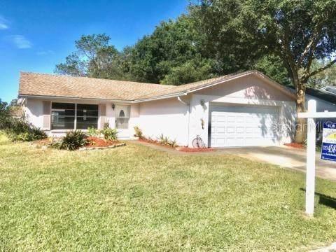 3727 Mendocino Street, New Port Richey, FL 34655 (MLS #U8140240) :: Expert Advisors Group