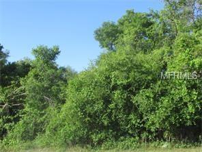 707 Howland Boulevard, Deltona, FL 32738 (MLS #V4716530) :: Premium Properties Real Estate Services