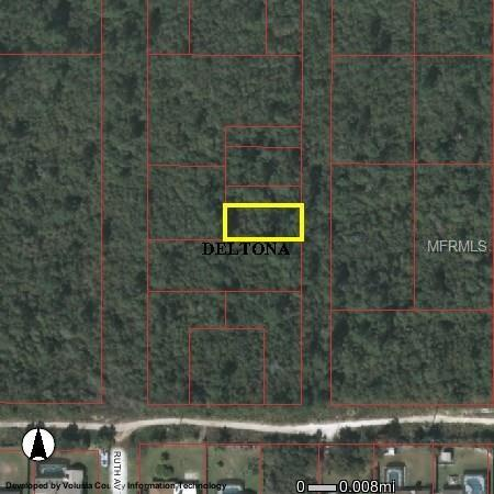 Wolverine Paper Avenue, Deltona, FL 32725 (MLS #V4721896) :: Premium Properties Real Estate Services