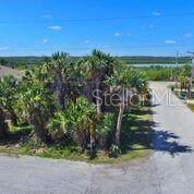 4280 Cardinal Boulevard, Port Orange, FL 32127 (MLS #V4901963) :: Delgado Home Team at Keller Williams