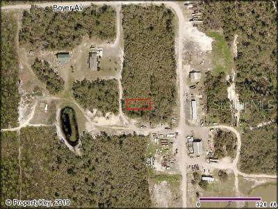 No Street, De Leon Springs, FL 32130 (MLS #V4905671) :: The Kardosh Team