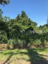 S Stone Street, Deland, FL 32720 (MLS #V4906445) :: Bustamante Real Estate