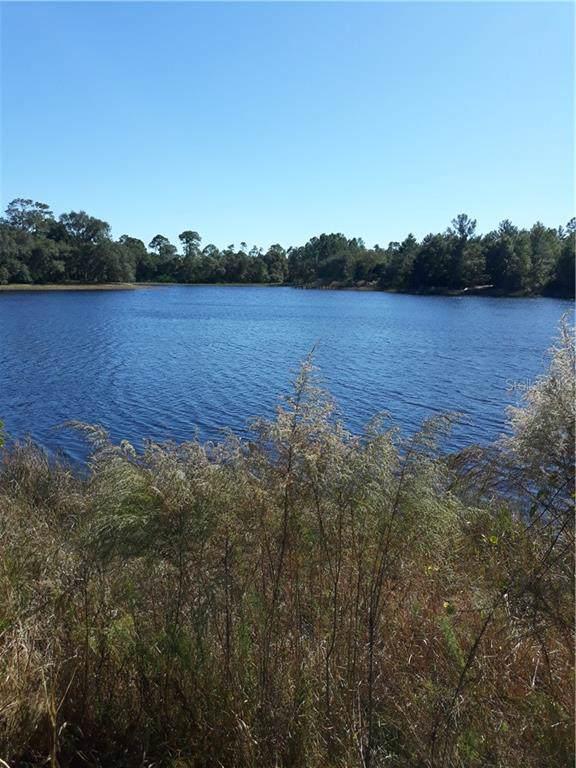 1225 Emmel Road, Lake Helen, FL 32744 (MLS #V4911619) :: Team Bohannon Keller Williams, Tampa Properties